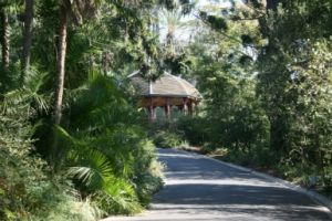 Royal Botanic Gardens Victoria - Accommodation Tasmania