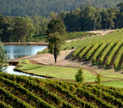 Brookhampton Estate Vineyard - Accommodation Tasmania