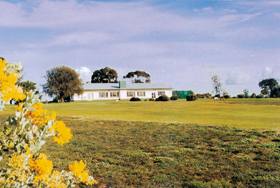 Lucindale Country Club - Accommodation Tasmania