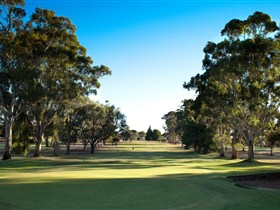 Loxton Golf Club - Accommodation Tasmania