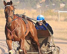 Ballarat  District Trotting Club - Accommodation Tasmania