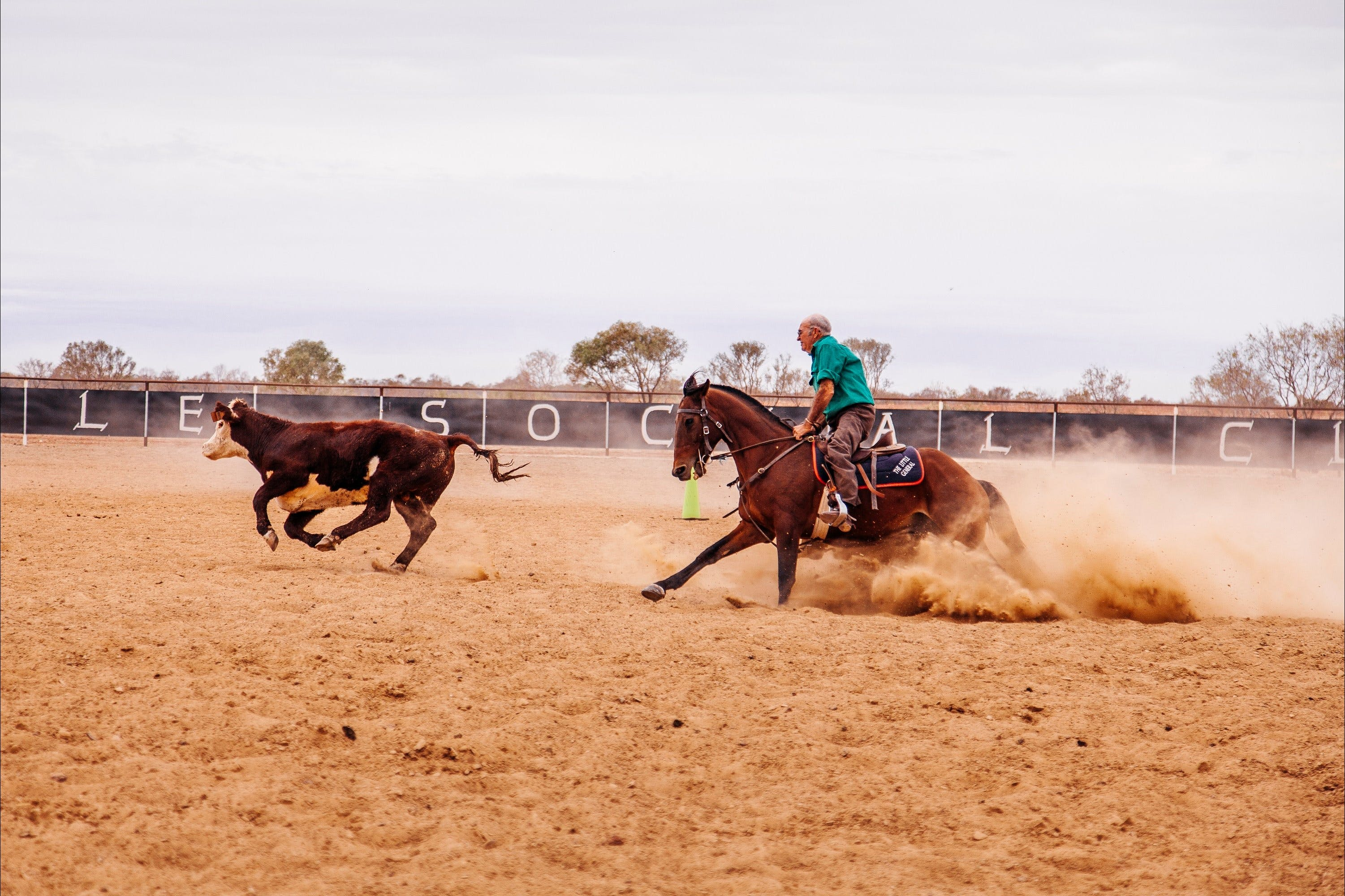 Birdsville Campdraft  Rodeo and Bronco Branding - Accommodation Tasmania