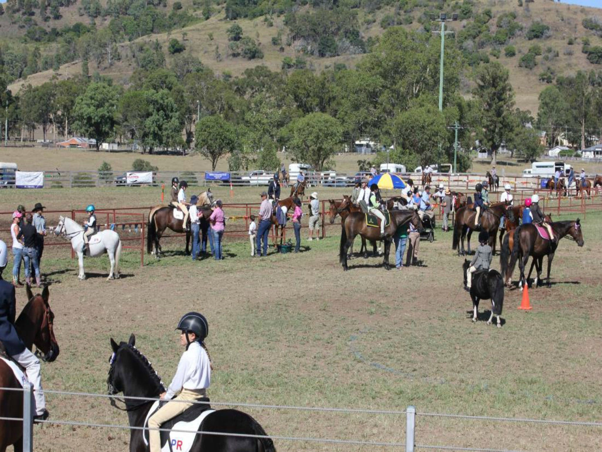 Gresford Agricultural Show - Accommodation Tasmania