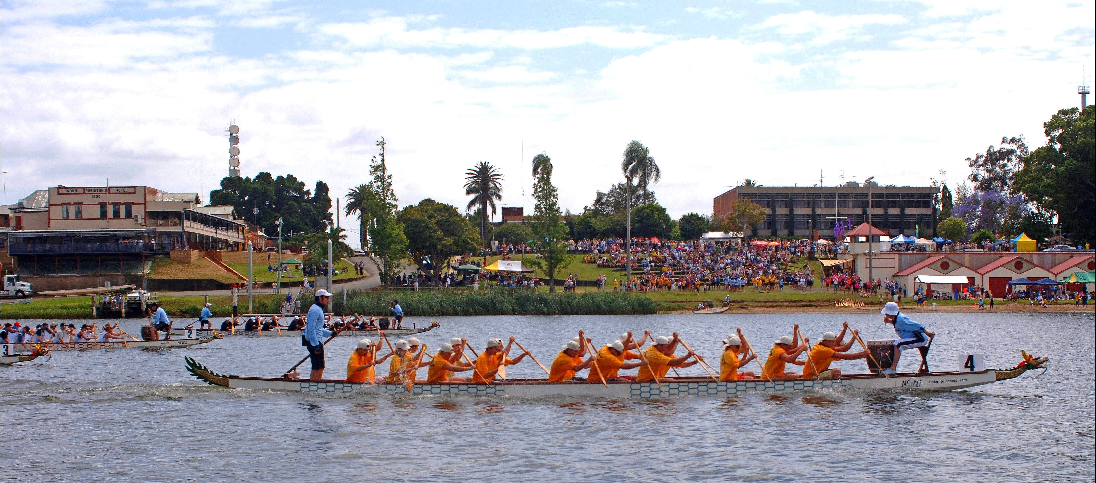 Jacaranda Dragon Boat Races - Accommodation Tasmania