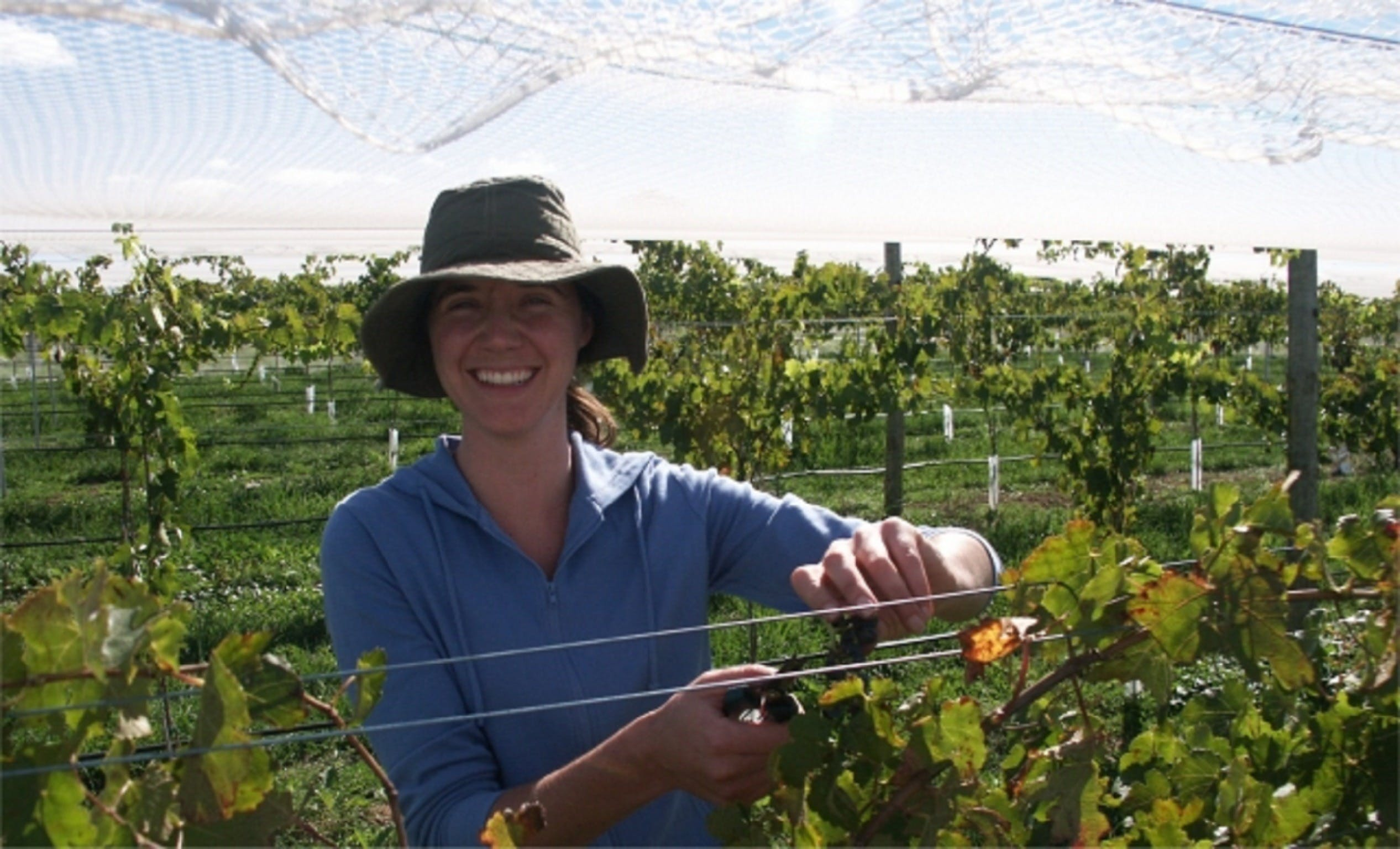 Kingsdale Wines - Cellar Door Wine Tastings - Accommodation Tasmania