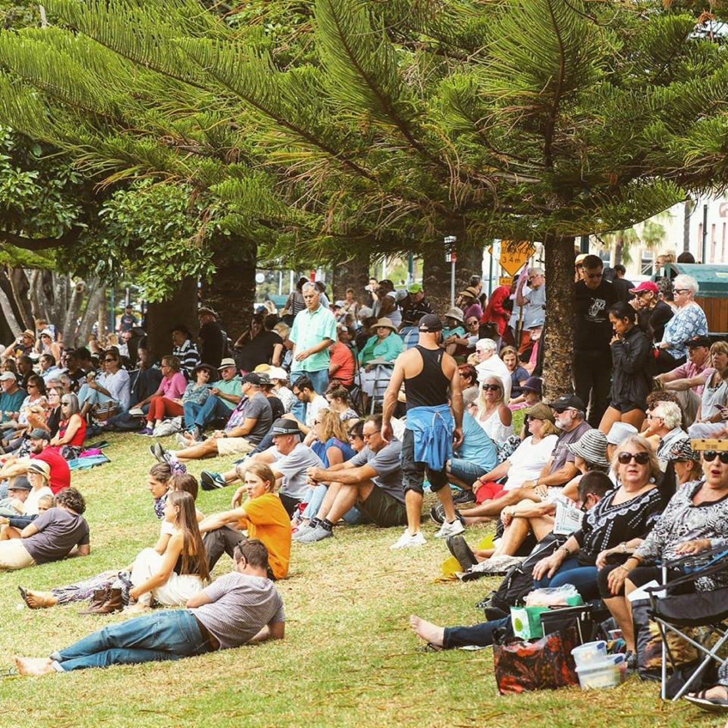 Music in the Park - Accommodation Tasmania