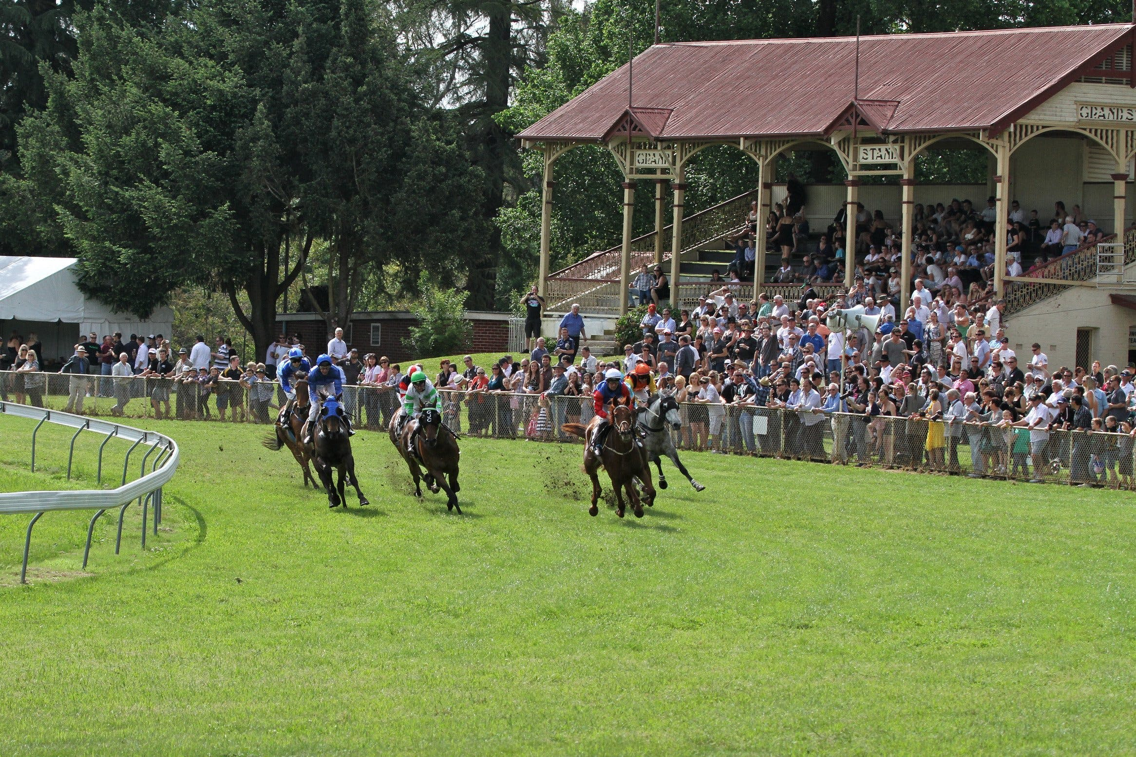 Tumut Derby Day - Accommodation Tasmania