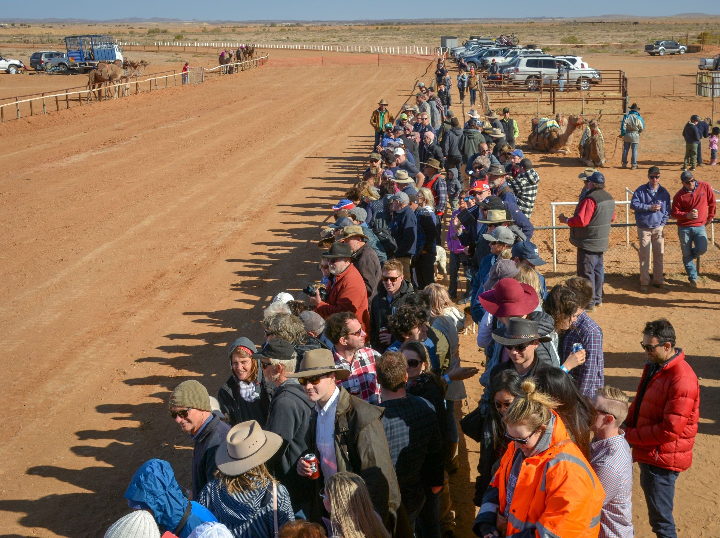 28th Marree Australasian CAMEL CUP 3 July 2021 - Accommodation Tasmania