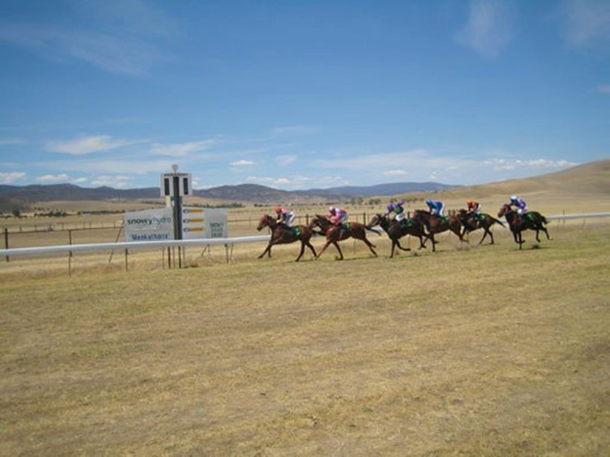 Adaminaby Cup Race Day - Accommodation Tasmania