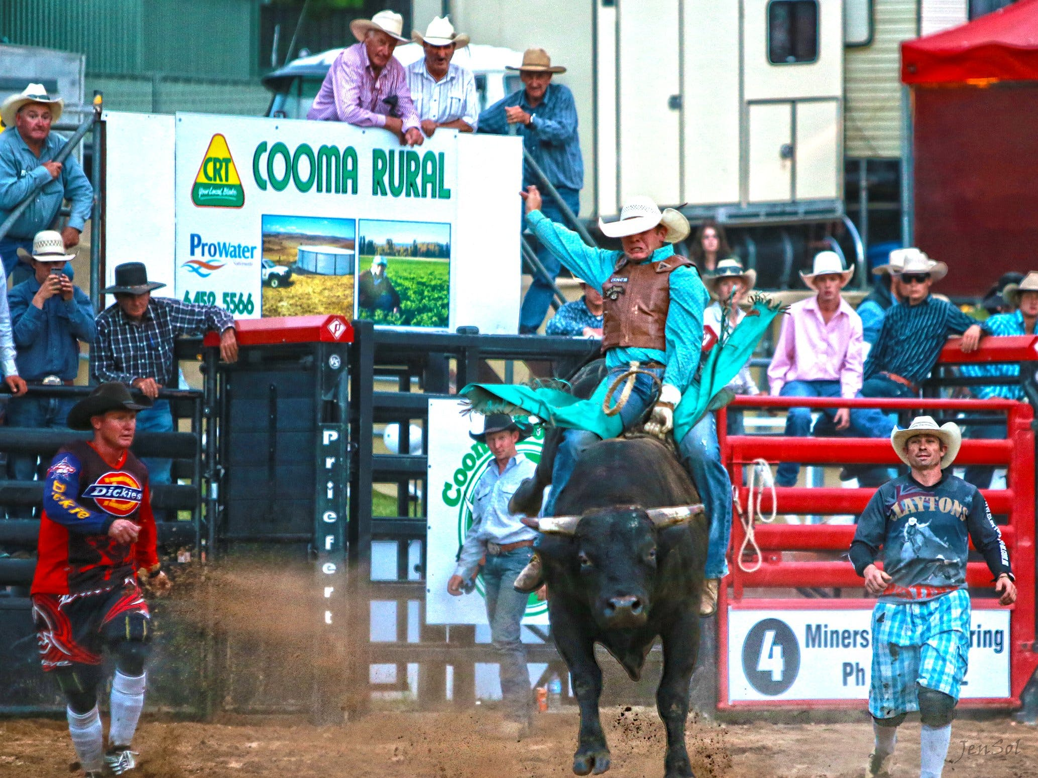 AgriWest Cooma Rodeo - Accommodation Tasmania