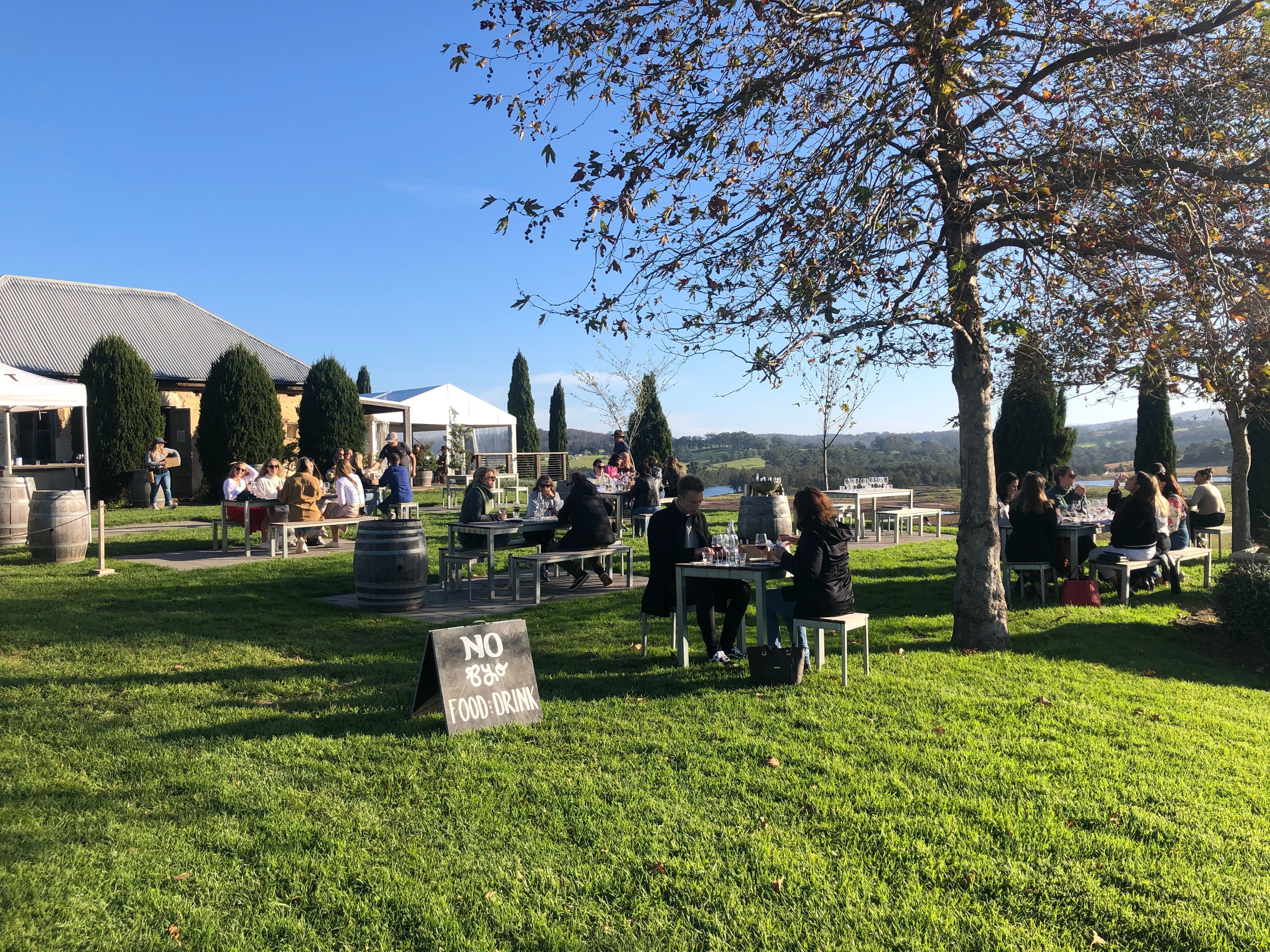 Cheese and Wine Experience - Accommodation Tasmania