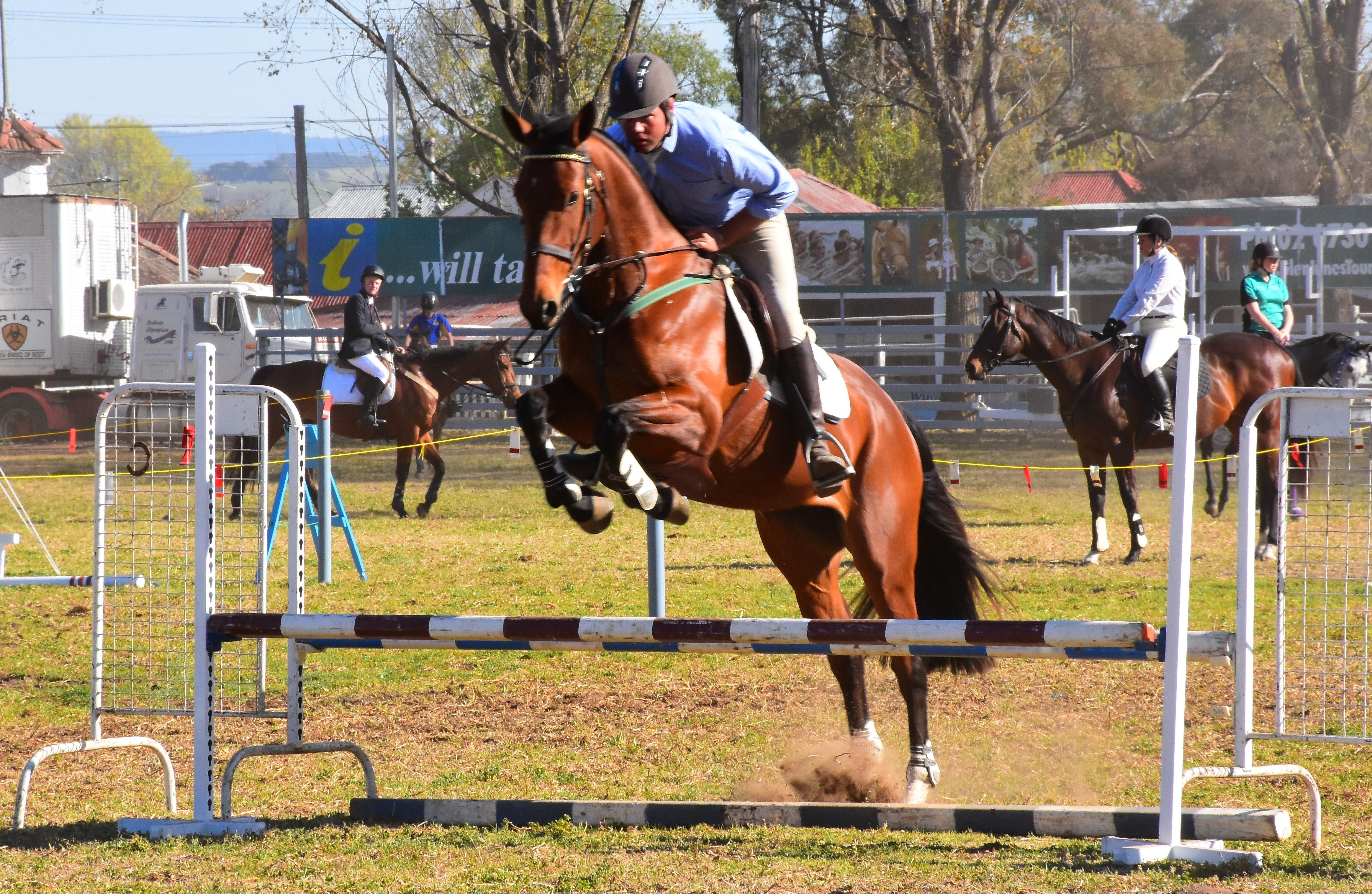 Glen Innes Pastoral and Agricultural Show - Accommodation Tasmania