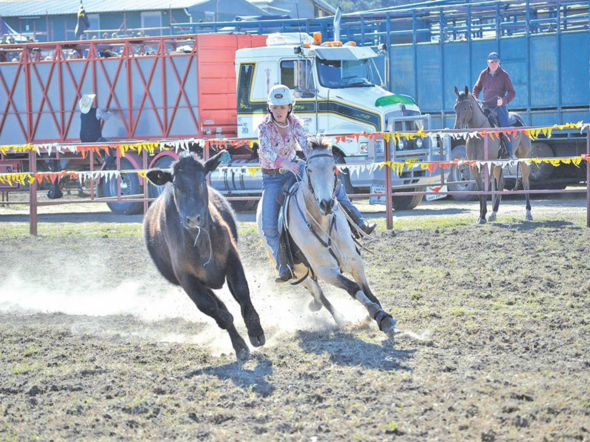 Gresford  Campdraft and Rodeo - Accommodation Tasmania