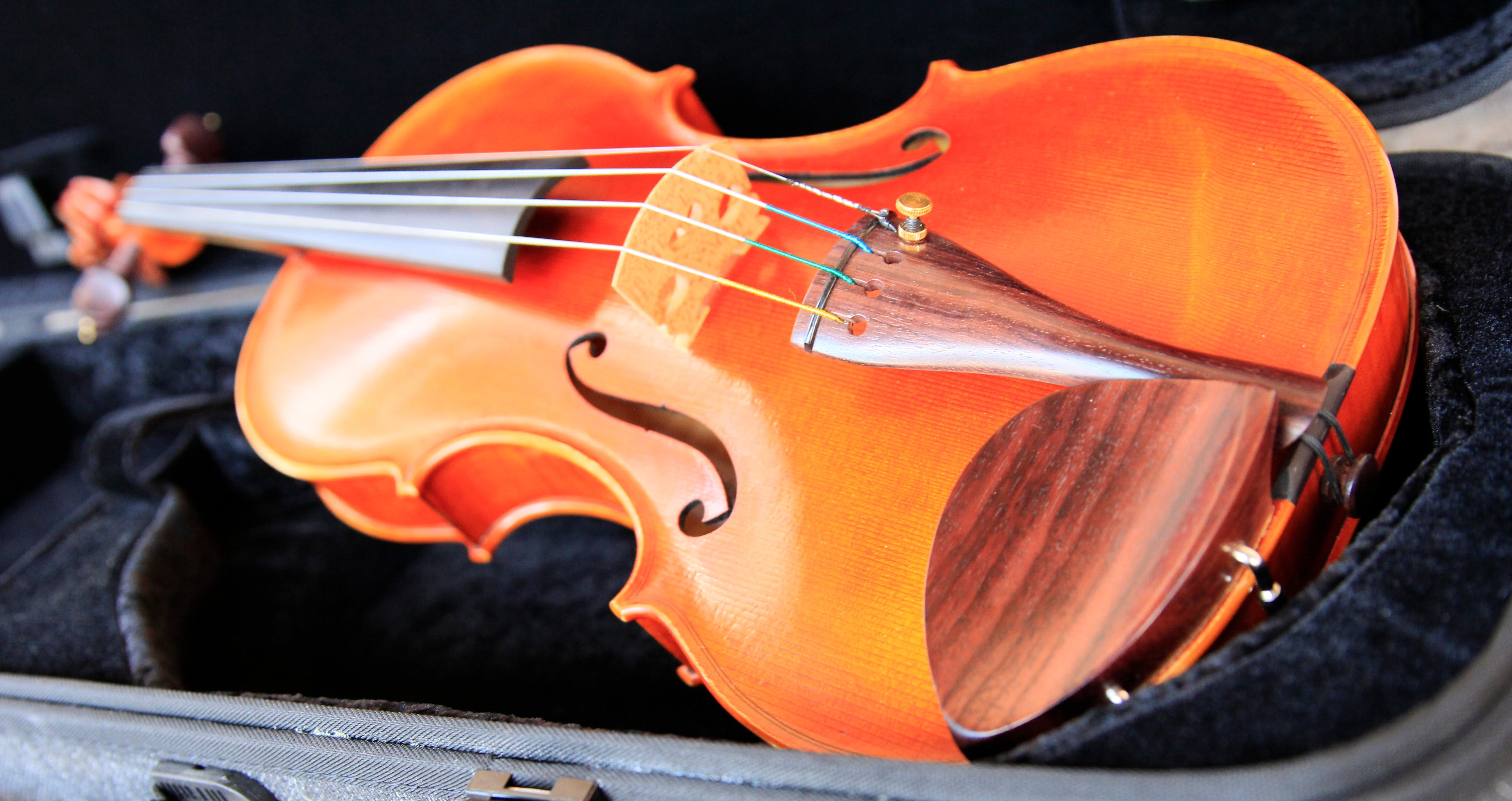 Kendall National Violin Competition Finals Weekend - Accommodation Tasmania