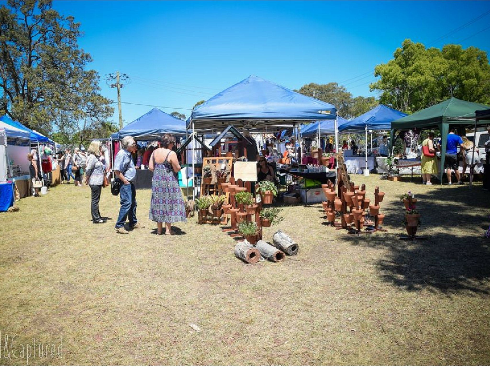 Luddenham Country Market - Accommodation Tasmania