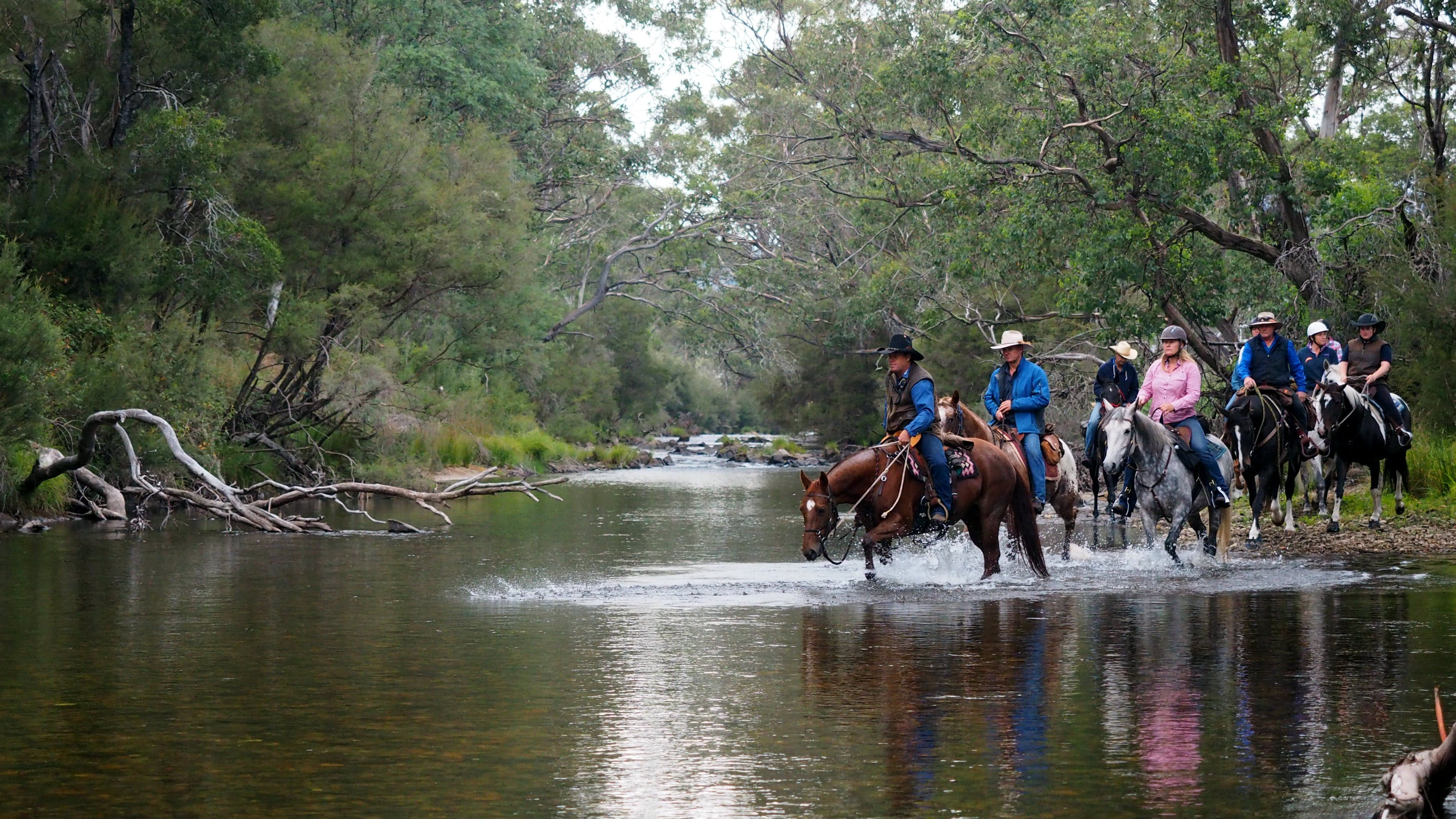 The Man From Snowy River Bush Festival - Accommodation Tasmania