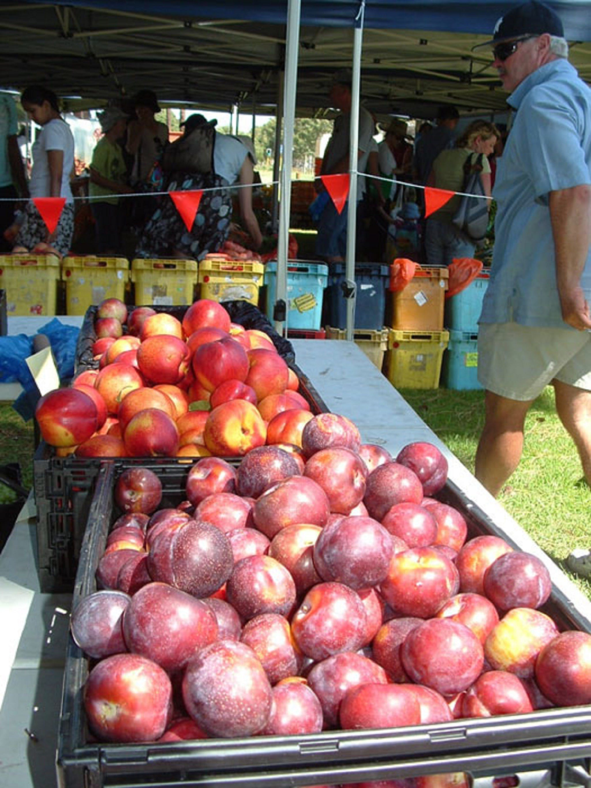 The Farmers Market on Manning - Accommodation Tasmania