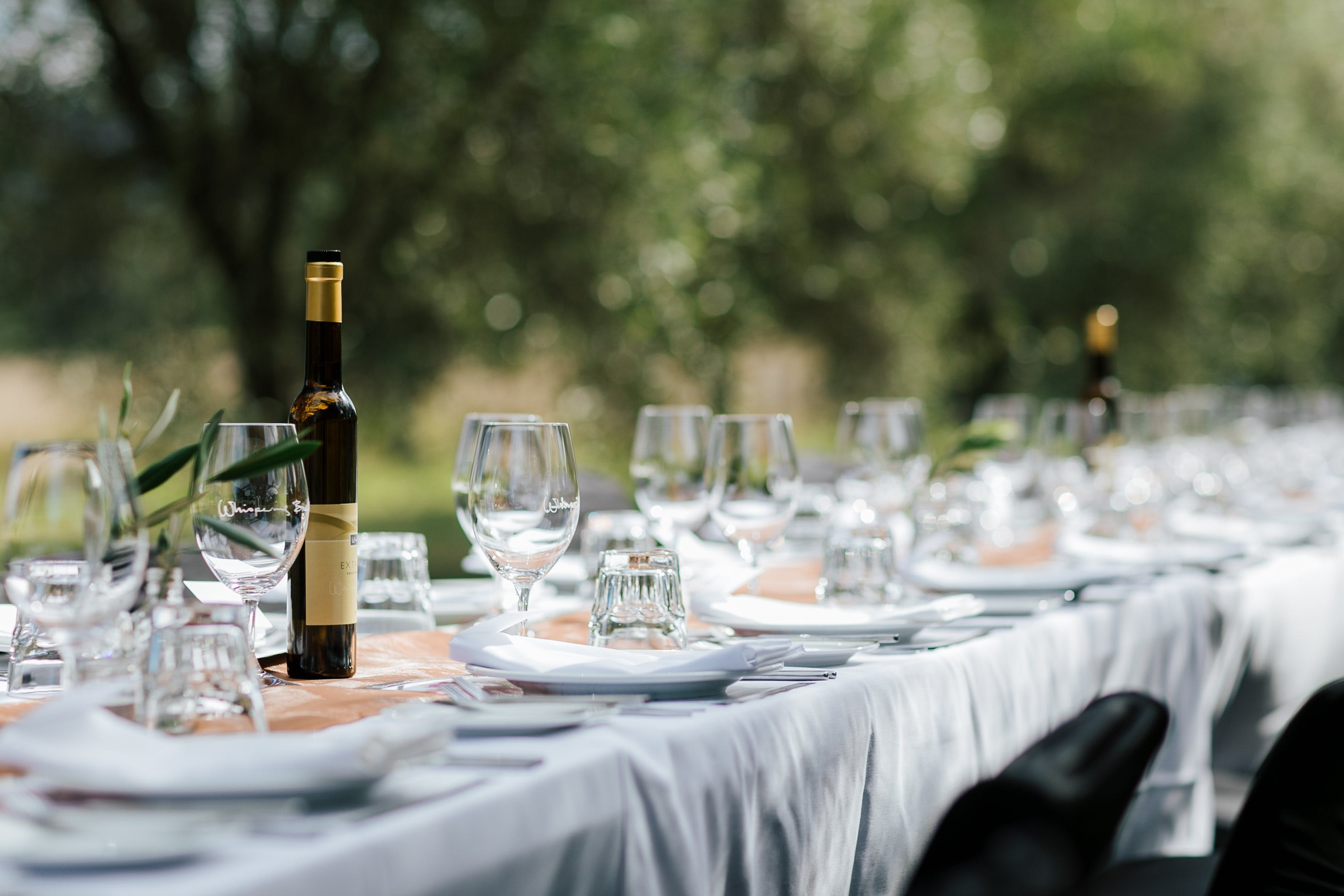 Whispering Brook Olive Long Table Luncheon - Accommodation Tasmania