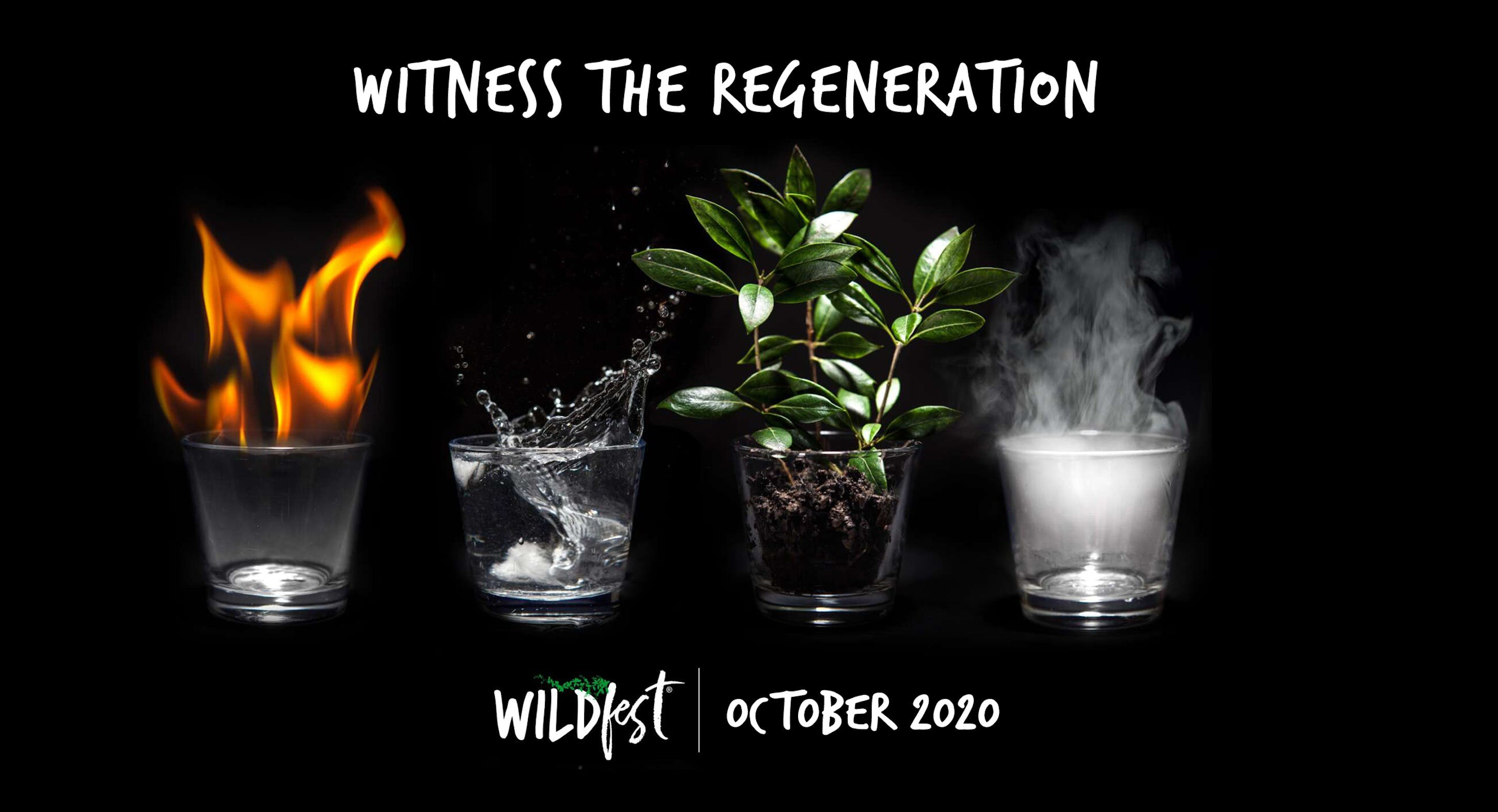 Wildfest - Annual Festival - Accommodation Tasmania
