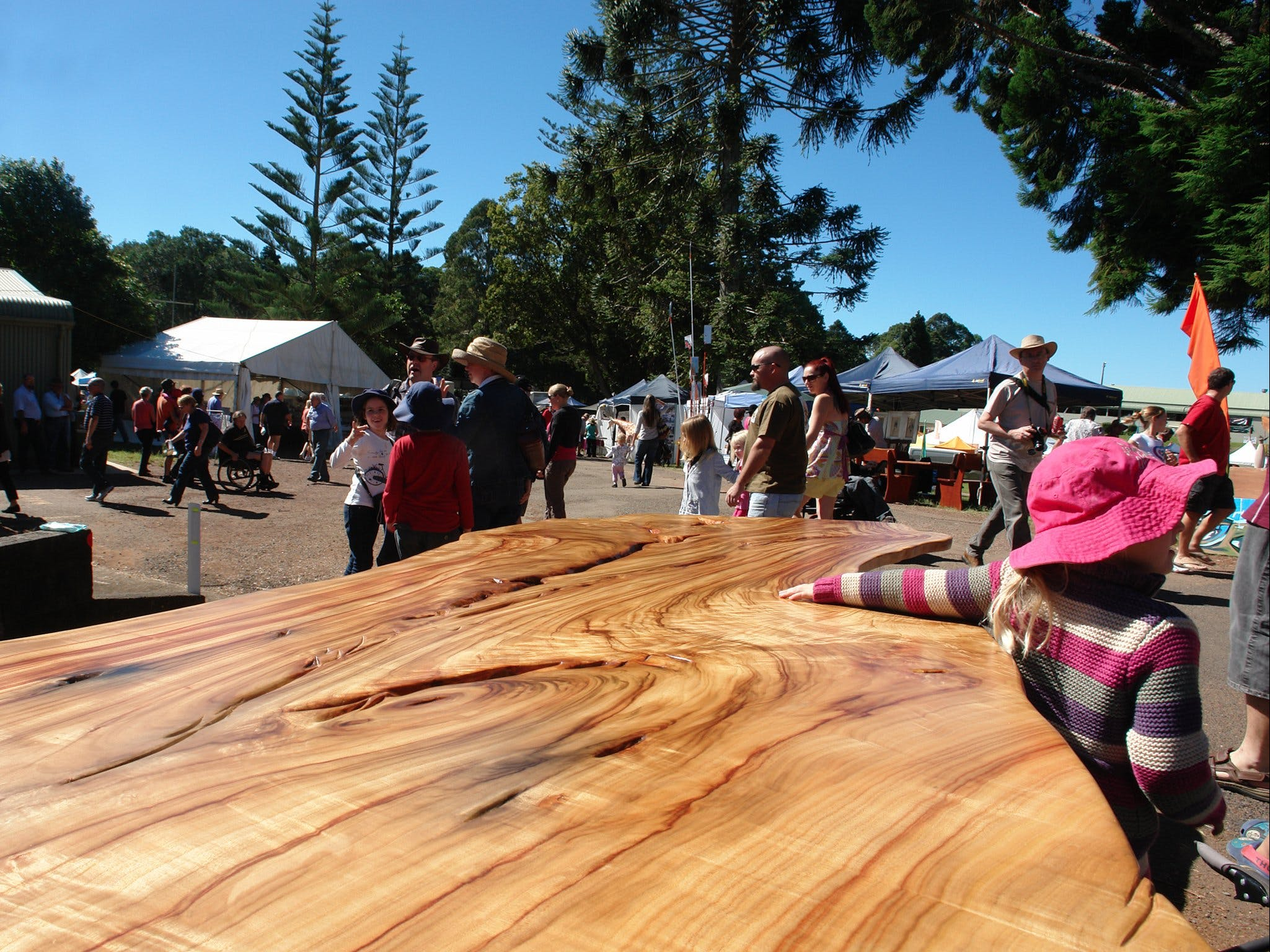 Maleny Wood Expo From Seed to Fine Furniture - Accommodation Tasmania