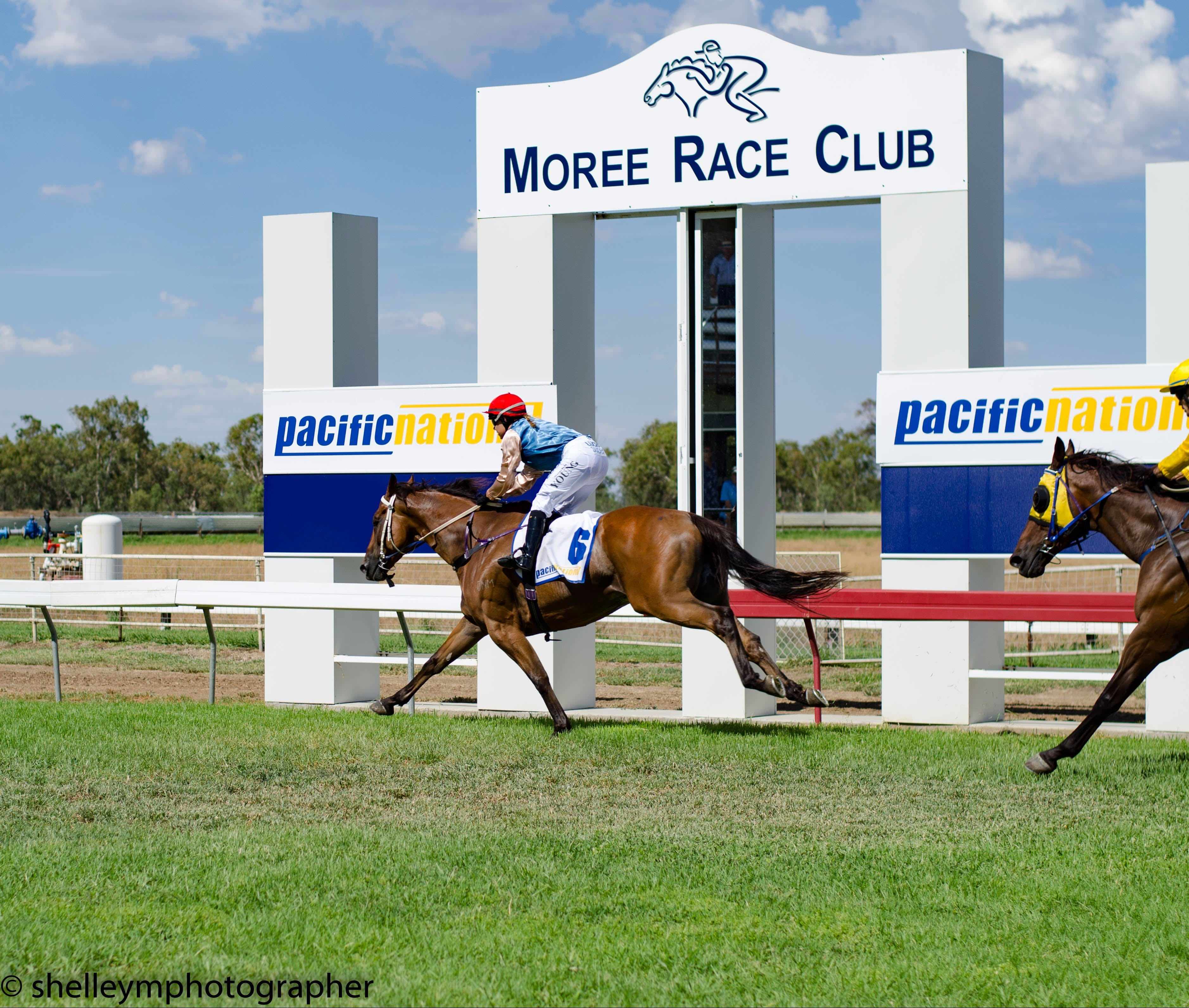 Moree Race Club TAB Race Day - Accommodation Tasmania
